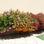 Římsa na květiny